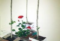 باغ مدور در عمارت عینالدوله