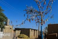 زندگی نیمی از سنندجیها در حاشیه شهر