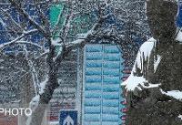 برف و سرما بعضی مدارس را در اردبیل تعطیل کرد