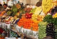 امسال سال فراوانی میوه است/ قیمتها به زودی کاهش مییابد