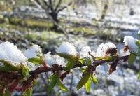 رسیدن هوای قطبی به مازندران