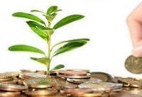 نقش سرمایه گذاریهای داخلی در رونق تولید