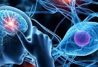 از هوش و متعلقات آن چه میدانیم؟