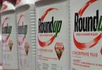 Monsanto ordered to pay $2 bn in new Roundup trial