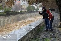 ضرورت توجه به آموزش مردم و مسئولان در مواجهه با پدیدههای طبیعی