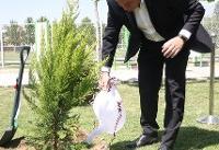 مارک ویلموتس ۳ ساله با ایران امضا کرد + جزییات