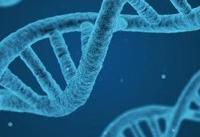 کشف ژن های مرتبط با بیماری روانی