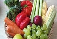 دانستنی&#۸۲۰۴;هایی درباره گیاه&#۸۲۰۴;خواری