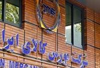 امکان توسعه تجارت ایران و قطر از مسیر بورس کالا