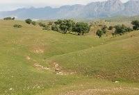 میزان فرسایش خاک ۱۲ برابر حد قابل تحمل ایران است/مخاطرات سیل در کمین شخم و شیار اراضی پرشیب