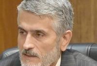 واکنش شهرداری تهران به «سگ کشی»