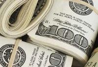 پیشنهاد تجدید نظر در ارائه ارز دولتی