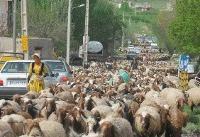 فصل کوچ عشایر به شهر سرابها