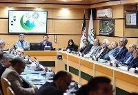 حناچی: همه به برگزاری منظم انتخابات شورایاریها کمک کنند