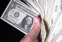 کشف ۹۶ بسته ۱۰۰ دلاری از خانه یک روستایی