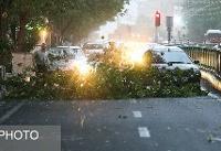امروز؛ وزش باد شدید در ۹ استان