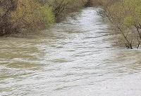 رودخانهها باید به نسبت جوانی و پیری پاکسازی شوند