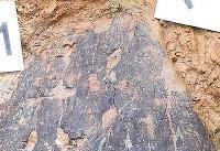 کشف سپر جنگی ۲۴۰۰ ساله +تصاویر