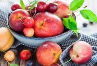 کدام میوهها ارزان شدند؟