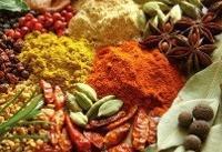 تدوین فهرست داروهای سنتی و گیاهی تا پایان تیرماه