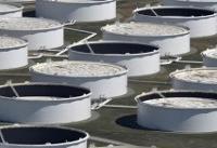 افزایش قیمت نفت در پی سقوط ذخایر آمریکا