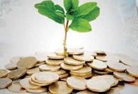 گسترش صدور ضمانتنامههای اعتباری برای شرکتهای دانشبنیان