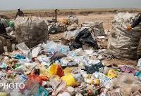 متوسط درآمد زبالهگردهای چرخی و کتفی/یک سوم زبالهگردان تهران کودکاند