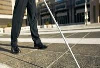 ۱۱ درصد معلولان تحت پوشش بهزیستی نابینا هستند