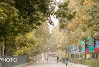 «ازن» عصر امروز هوای تهران را آلوده میکند
