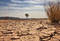 ۱۰۰ میلیون هکتار از اراضی کشور در معرض بیابانی شدن