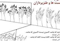 فریاد کاریکاتورها برای به آتش کشیده شدن جنگلها
