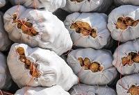 ممنوعیت صادرات سیبزمینی به عراق لغو شد