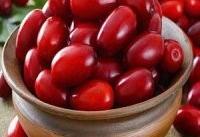 خاصیت آنتی اکسیدانی ۵ میوه، خطر چاقی را از شما دور می کند