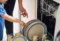 Best Dishwashers for Young Families
