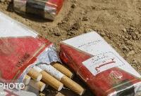 ۶ نکته درباره تهدیدهای سیگار برای محیط زیست