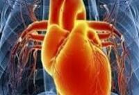 بیماری دریچه قلب؛ دلایل و عوامل خطرآفرین