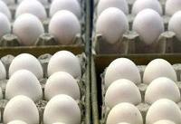 عرضه اولیه یک شرکت تخم مرغی