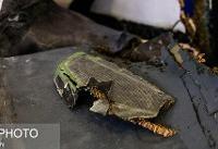 کمیسیون امنیت ملی از بقایای پهپاد آمریکایی بازدید میکند