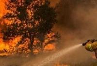 آتش در کمین جنگل&#۸۲۰۴;های زاگرس