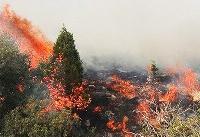 آتش به جان ۲۰ هکتار از جنگهای ملی قزوین