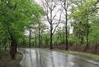 باران امروز و فردا ۱۳ استان را خنک میکند
