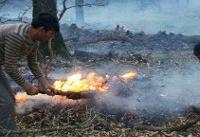 پارک ملی گلستان؛ بیدفاع در برابر حریق