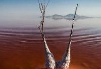 خشک شدن دریاچه ارومیه تهدیدی جدی برای کشاورزی آذربایجان غربی