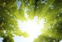 عوارض تشعشعات خورشیدی و چند توصیه