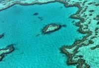Great Barrier Reef agency breaks with Australia gvt in climate warning