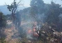 وقوع بیشتر آتشسوزی جنگلهای کردستان در روزهای پایانی هفته