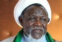 دولت و مجلس نیجریه هرچه سریعتر برای آزادی شیخ زکزاکی اقدام کند