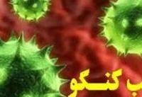 ابراهیمی: علت شیوع تب کریمه کنگو کمبود واکسن نیست
