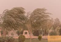 رگبار باران و وزش باد/خیزش گرد و خاک در مناطقی از کشور