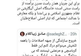 حمله توئیتری محمود صادقی به کارگزاران